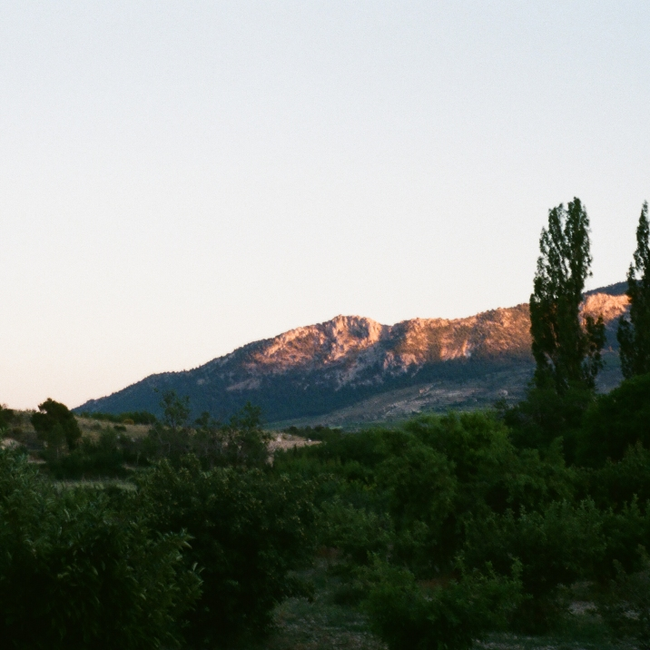 Beauty (pt 1) brought to you by the mountains of rural Spain (July 2018)